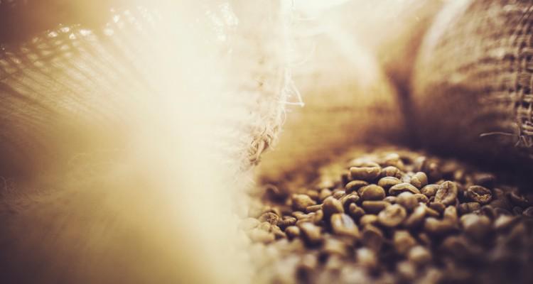 Historien om Miko Coffee fra 1801 til i dag.