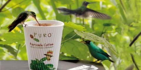 sustainablecoffee